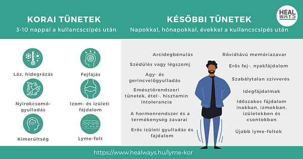 Lyme-kór tünetei