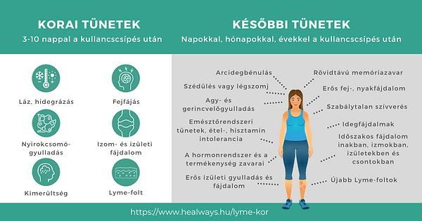 lyme-kór tünetei (2).png