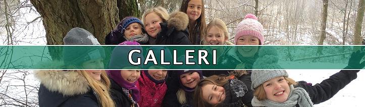 galleri_cover.jpg