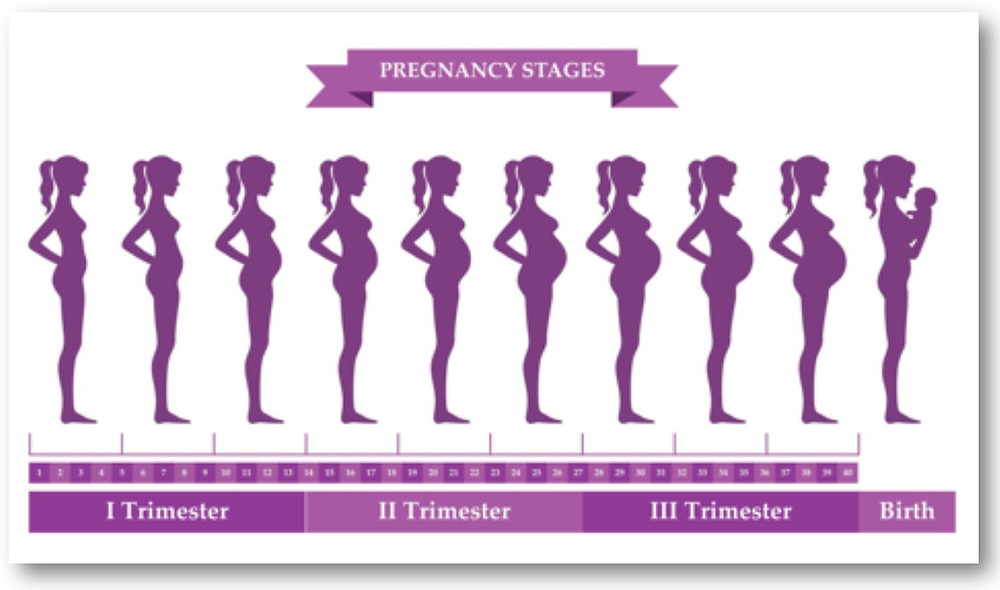 Good posture during pregnancy blog Back into Shape Clinic