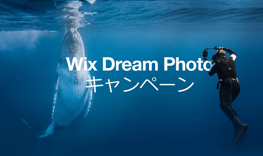 夢の写真撮影、叶えます! – Wix Dream Photoキャンペーン