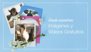 Dónde encontrar las mejores fotos y videos gratis