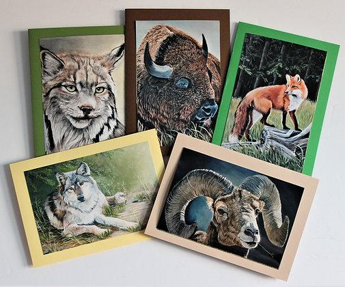 CARD BUNDLE - MAMMALS 2