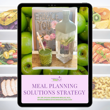 Embrace You Meal Planning Solution Guide 2021