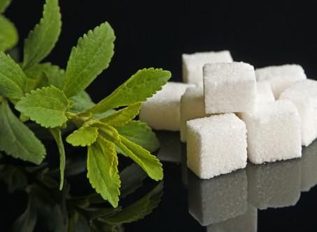 What is Stevia Sugar?