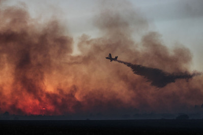 Incendio Minervino Murge (10).jpg