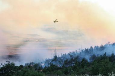 Incendio Minervino Murge (8).jpg