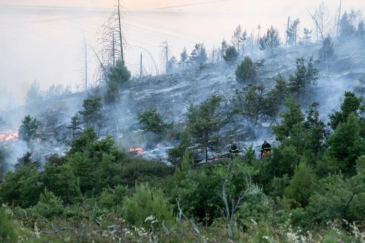 Incendio Minervino Murge (7).jpg