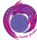 BondiPhoenix-logo.png