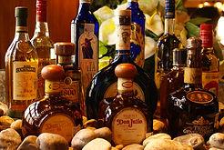 TequilasBot (2).JPG