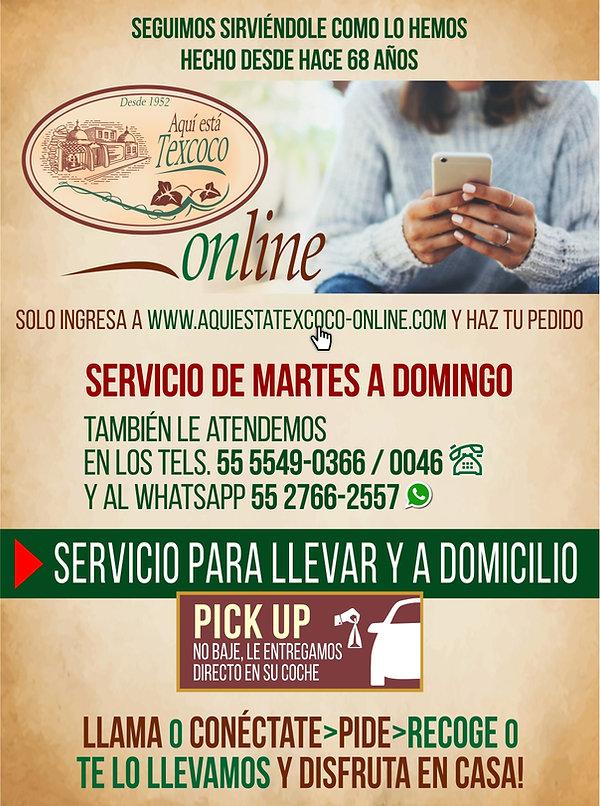 Webanner Texcoco Online.jpg