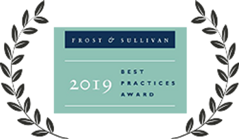 Frost and Sullivan 2019 Global Company of the Year Award for IT/OT