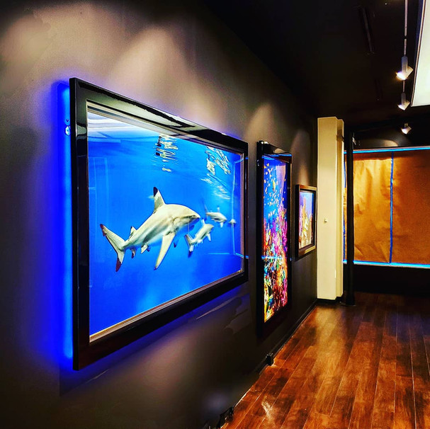 LED Art, Custom Frame Lighting, Lighting Enhancement, Art Lighting