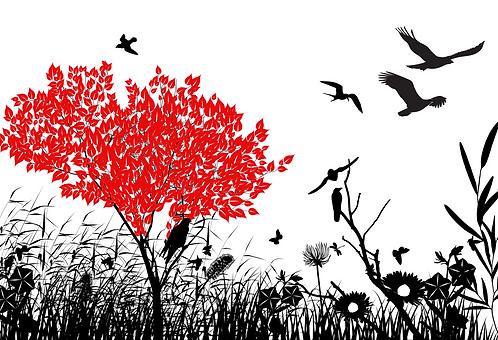 Árvore Copa Vermelha