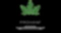 LogoFertig_ohneTHS.png