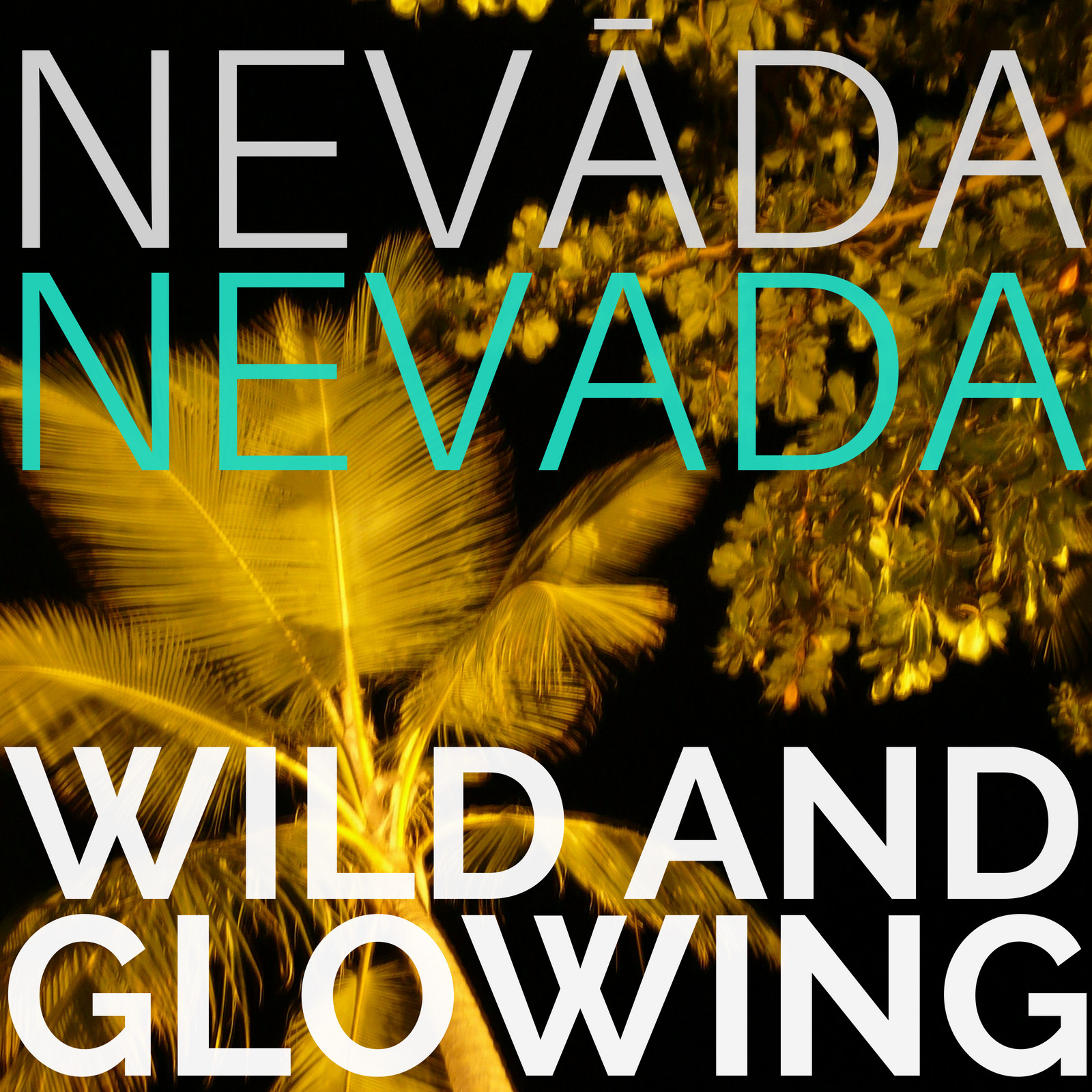 NevadaNevada-WildAndGlowing-FINAL COVER