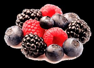 berries_edited.png