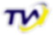 Logo Thick outline (Glow1).png