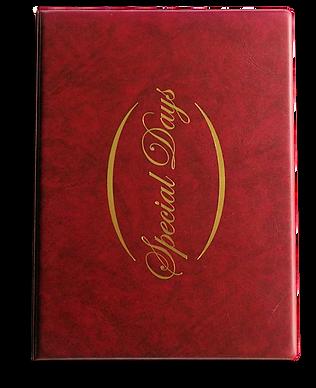 Folder Burgundy Shad.png