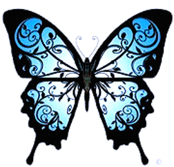 Imago Vitality butterfly