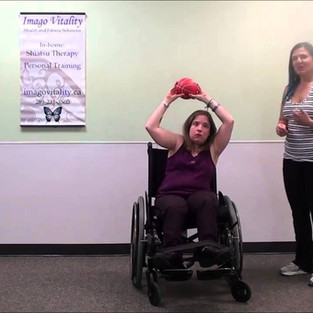 Seated halo exercise video