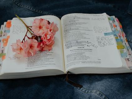 10 Super Study Tips