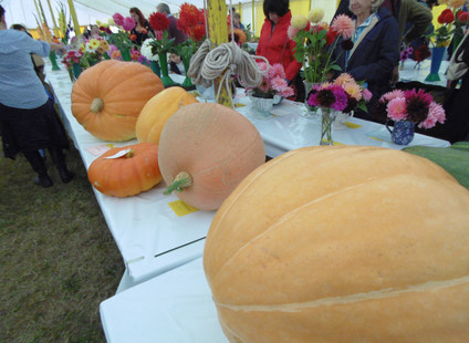 Usk Show 2018- A review