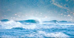 Dia mundial dos oceanos.