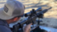 wolf_web_rifle1.jpg