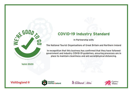 Good to Go Certificate.jpg