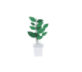 S1_Plant(1).png