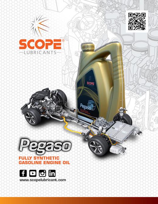 Scope Pegaso Feb 2019 3.jpg