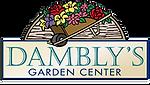 Damblys logo.png