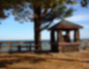 forester park_edited.jpg