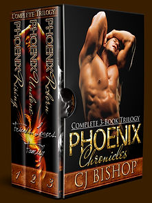 Phoenix Chronicles - Revised Image.jpg
