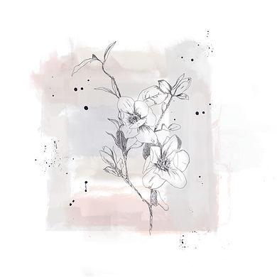 Blume24.05_2.jpg