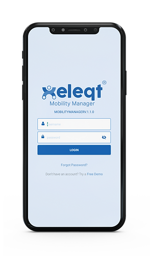 Mobility Manager -1.png