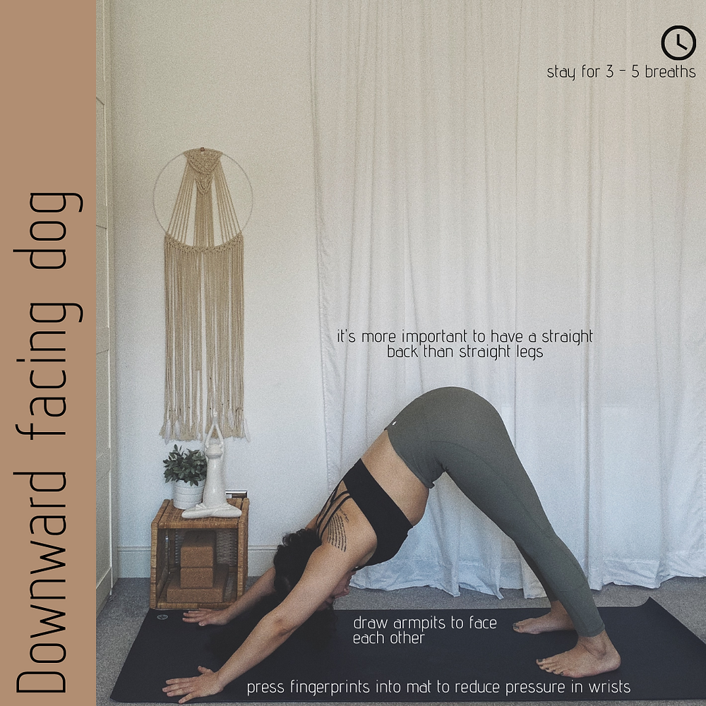Downward facing dog - Adho Mukha Shvanasana