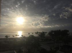Last morning in Florida