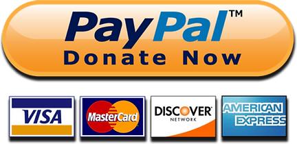 paypal-donate-now-button.png