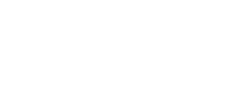Logo sbvn blanco2.png