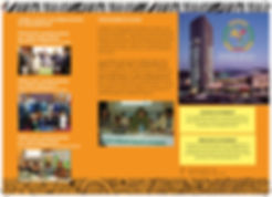 AU_ECOSOCC_Mauritius_Brochure2018_Page1.