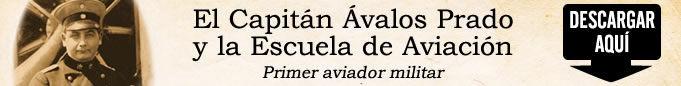 BANNER_AVALOS.jpg