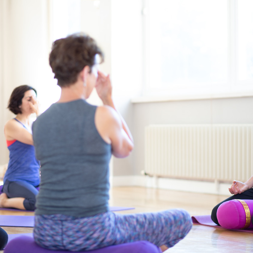 Menopause Yoga Hot Flushes Workshop