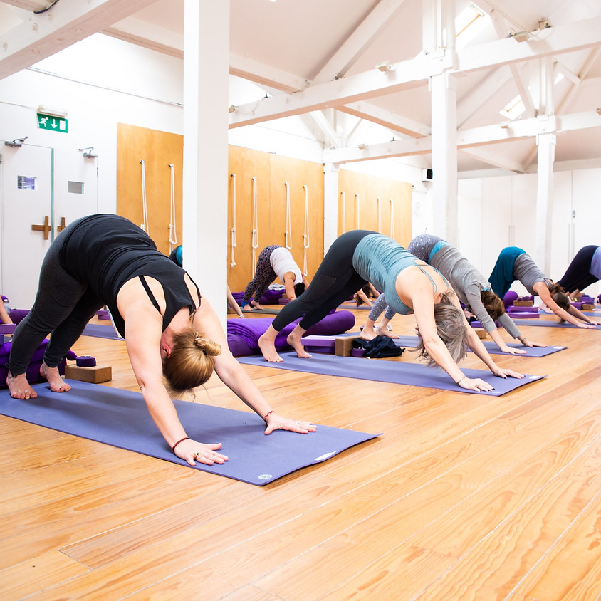 Weekly Menopause Yoga Class 2
