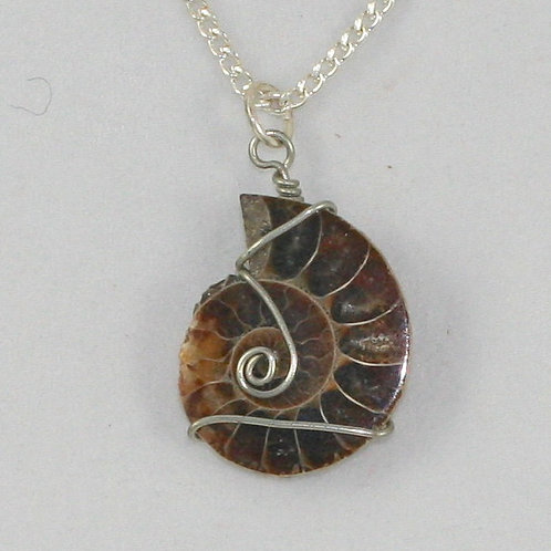 Shell Fossil Necklaces