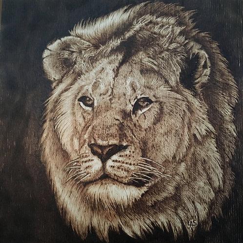 Pyro Lion
