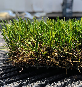 Synthetic Turf-OS65OGrass-Side.jpg
