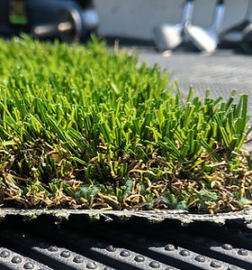 Synthetic Turf-OS53AGrass-Side.jpg