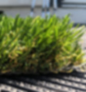 Synthetic Turf-PGC80Grass-Side.jpg